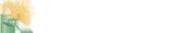 【逆子のお灸・安産灸】 東京・吉祥寺の鍼灸治療院 悠心堂